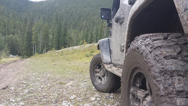 Baseline Mountain Alberta